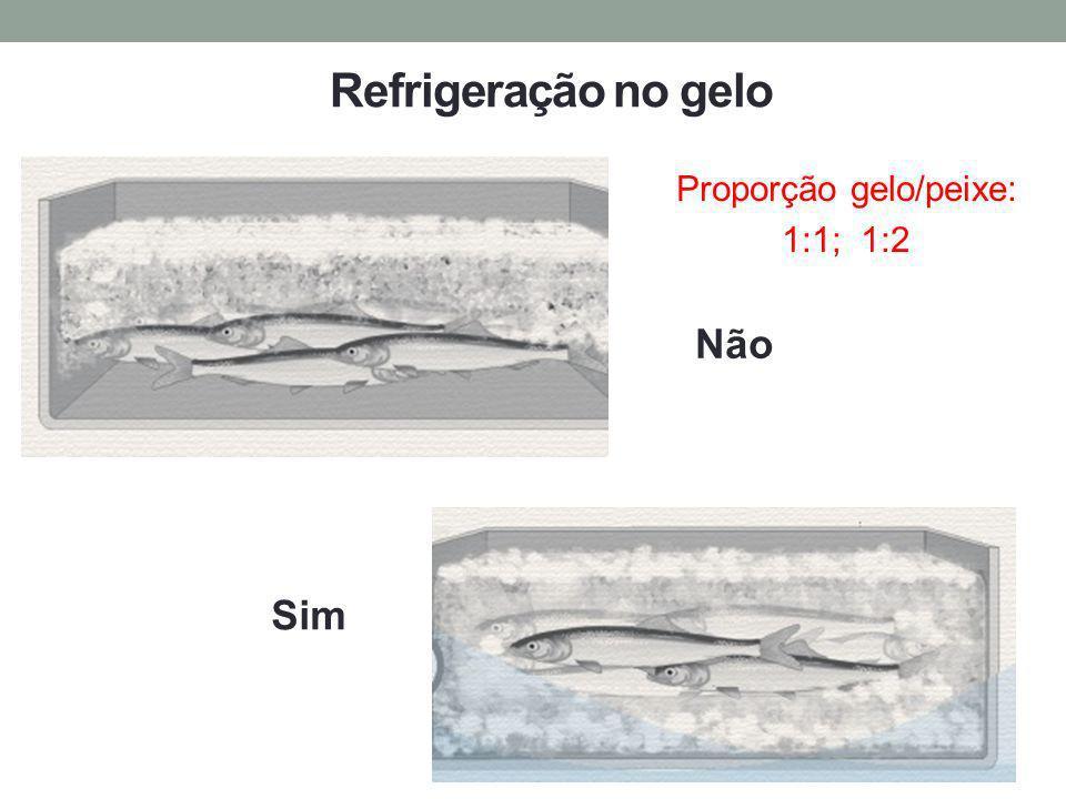 Proporção gelo/peixe: