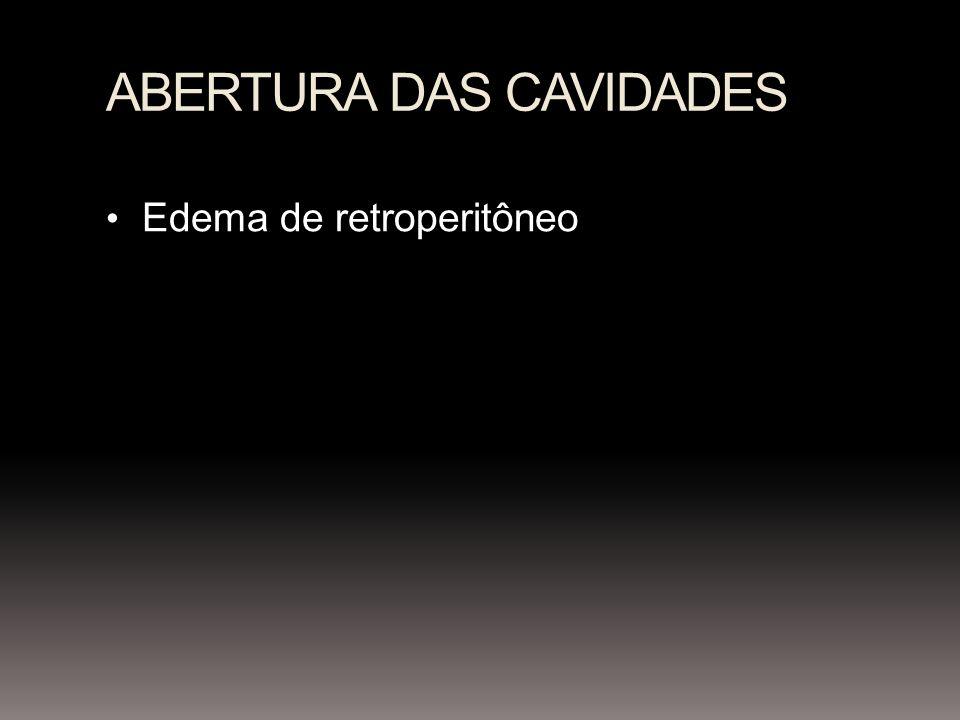 ABERTURA DAS CAVIDADES