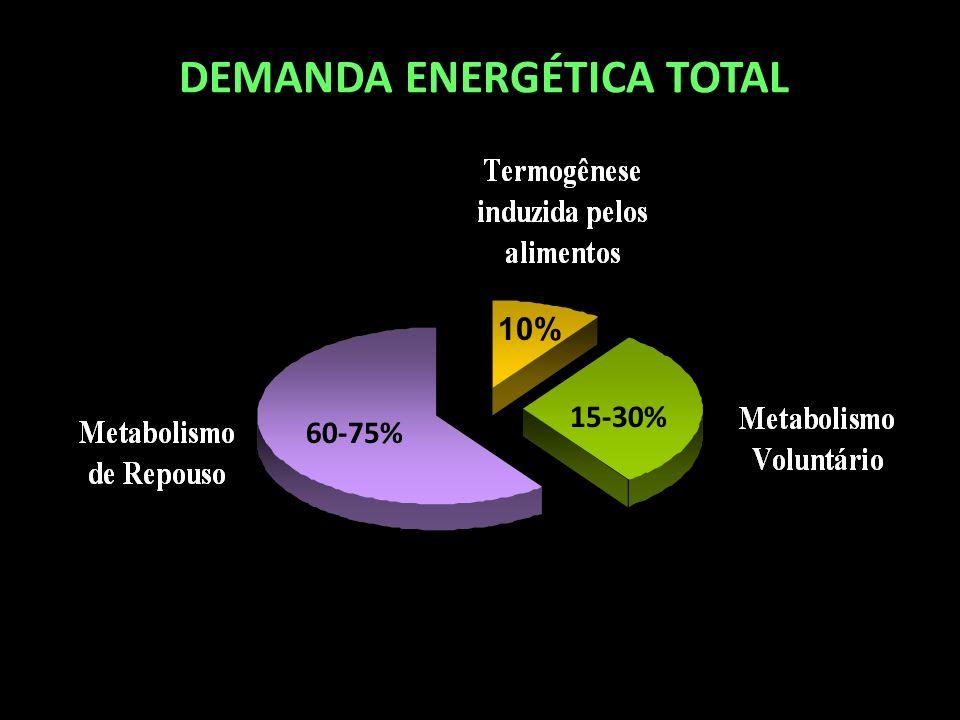 DEMANDA ENERGÉTICA TOTAL