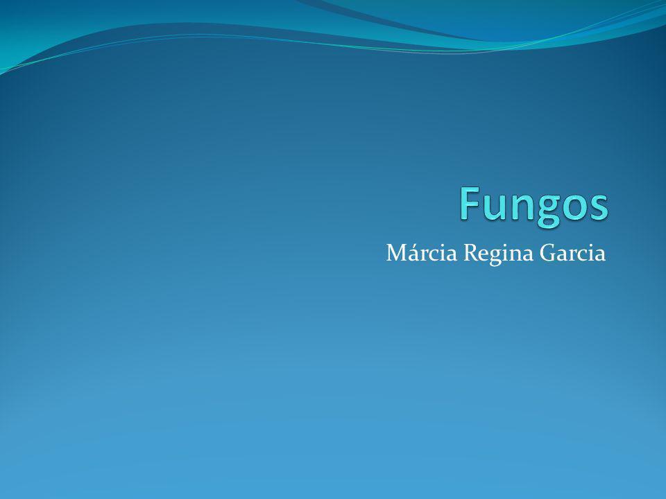 Fungos Márcia Regina Garcia