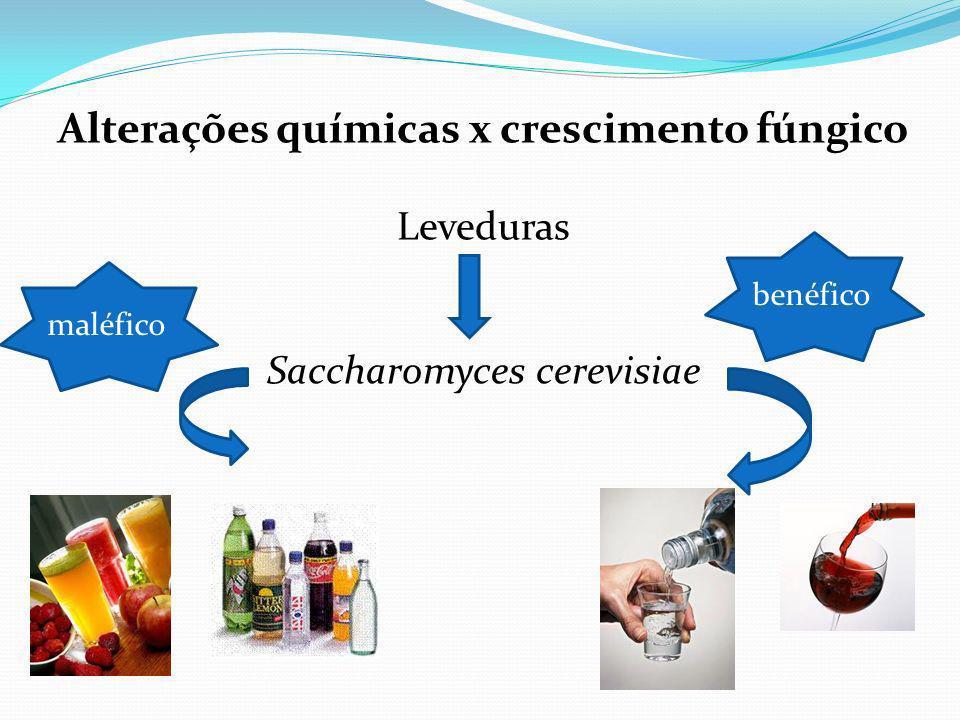 Alterações químicas x crescimento fúngico
