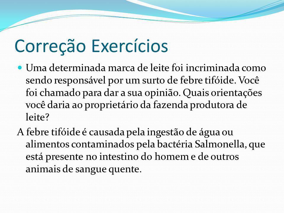 Correção Exercícios