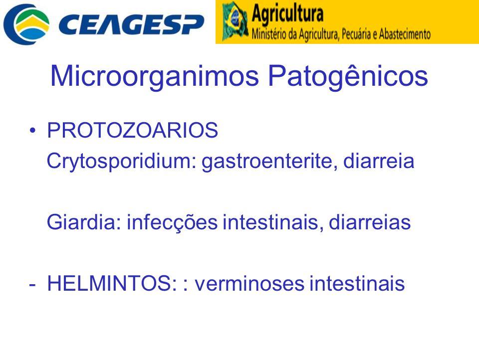 Microorganimos Patogênicos
