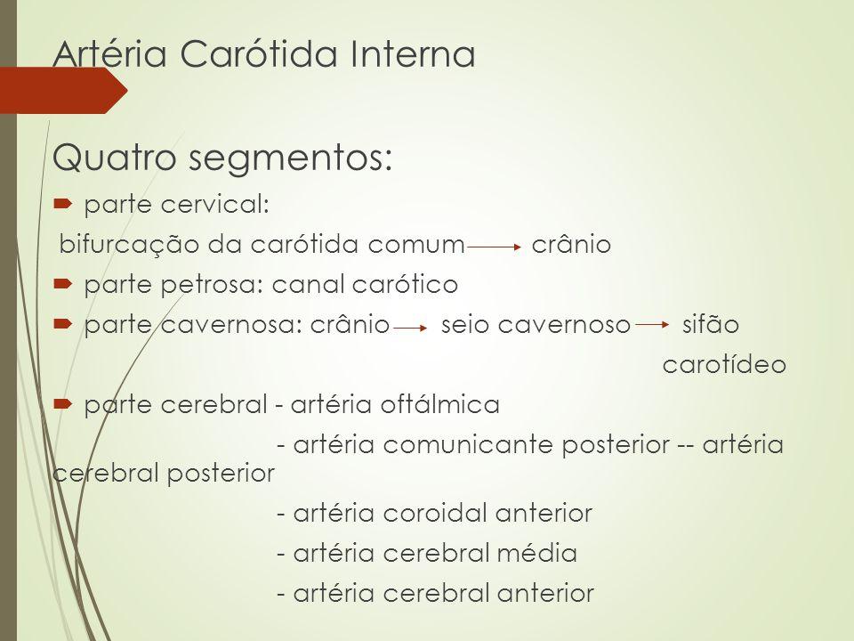 Artéria Carótida Interna Quatro segmentos: