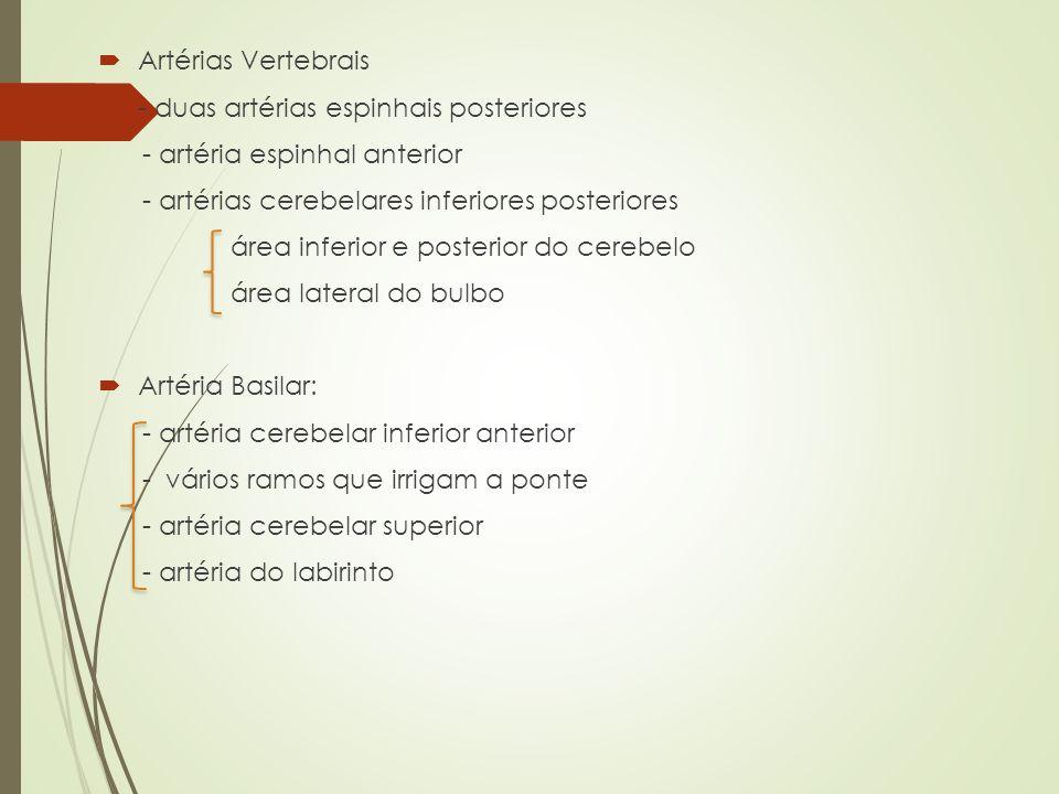 Artérias Vertebrais - duas artérias espinhais posteriores. - artéria espinhal anterior. - artérias cerebelares inferiores posteriores.