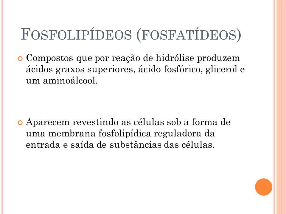Fosfolipídeos (fosfatídeos)