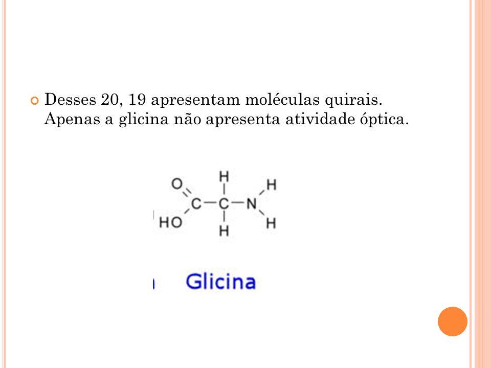 Desses 20, 19 apresentam moléculas quirais