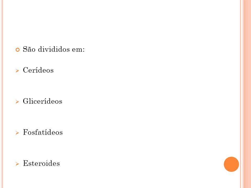 São divididos em: Cerídeos Glicerídeos Fosfatídeos Esteroides