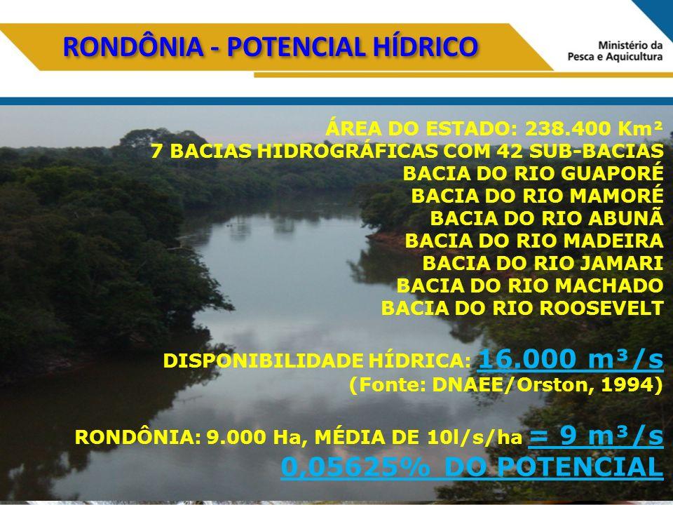 RONDÔNIA - POTENCIAL HÍDRICO