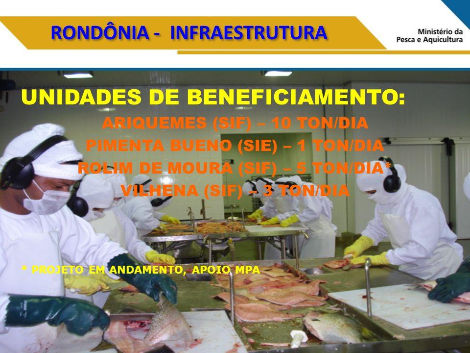 RONDÔNIA - INFRAESTRUTURA