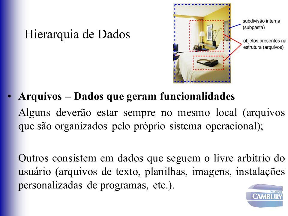 Hierarquia de Dados Arquivos – Dados que geram funcionalidades