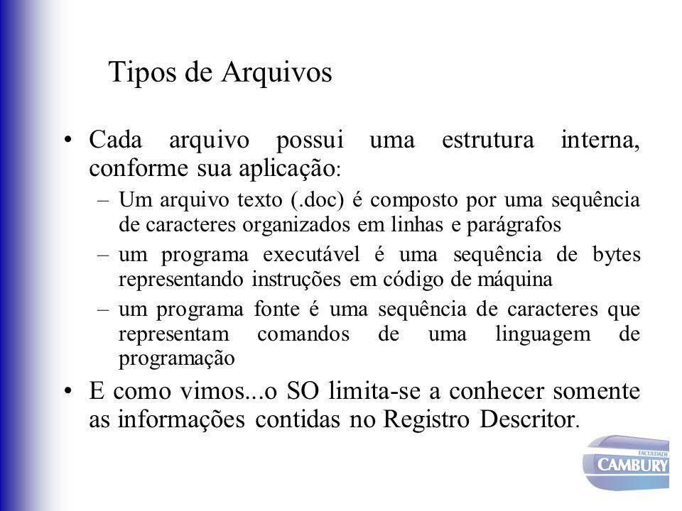 Tipos de Arquivos Cada arquivo possui uma estrutura interna, conforme sua aplicação: