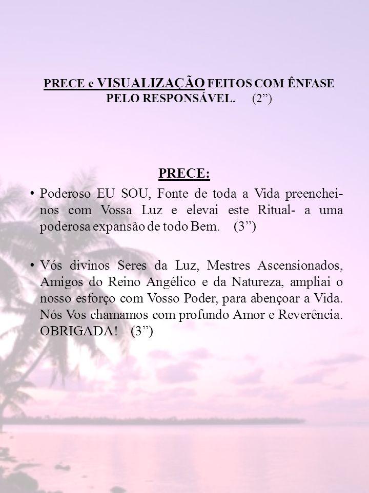 PRECE e VISUALIZAÇÃO FEITOS COM ÊNFASE PELO RESPONSÁVEL. (2 )