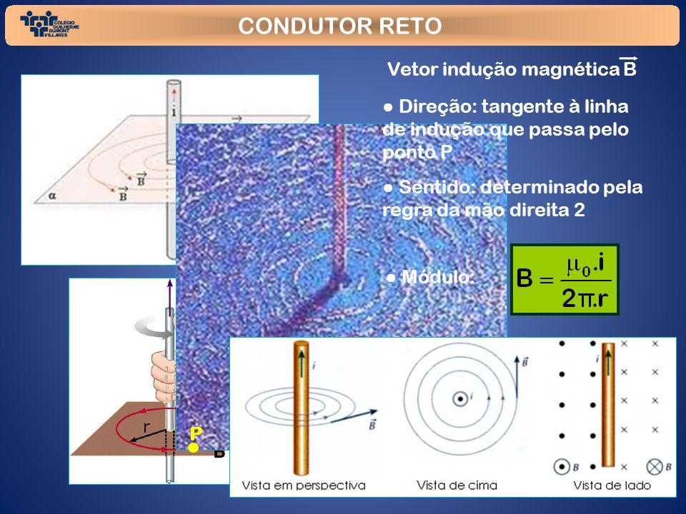 CONDUTOR RETO Vetor indução magnética B