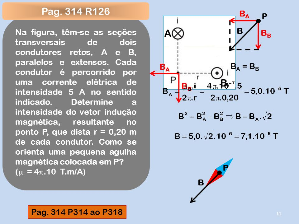 Pag. 314 R126 P. BA. BB.