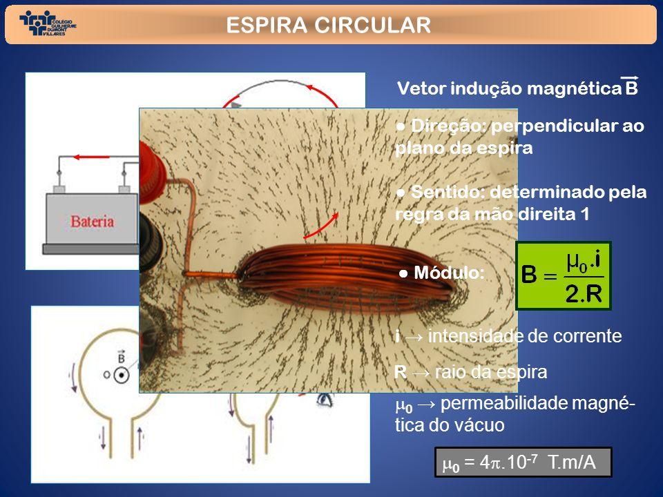 ESPIRA CIRCULAR Vetor indução magnética B