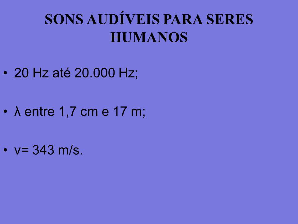 SONS AUDÍVEIS PARA SERES HUMANOS