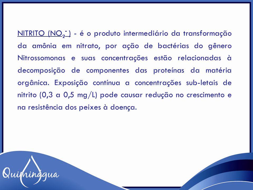 Nitrito (NO2- ) - é o produto intermediário da transformação da amônia em nitrato, por ação de bactérias do gênero Nitrossomonas e suas concentrações estão relacionadas à decomposição de componentes das proteínas da matéria orgânica.