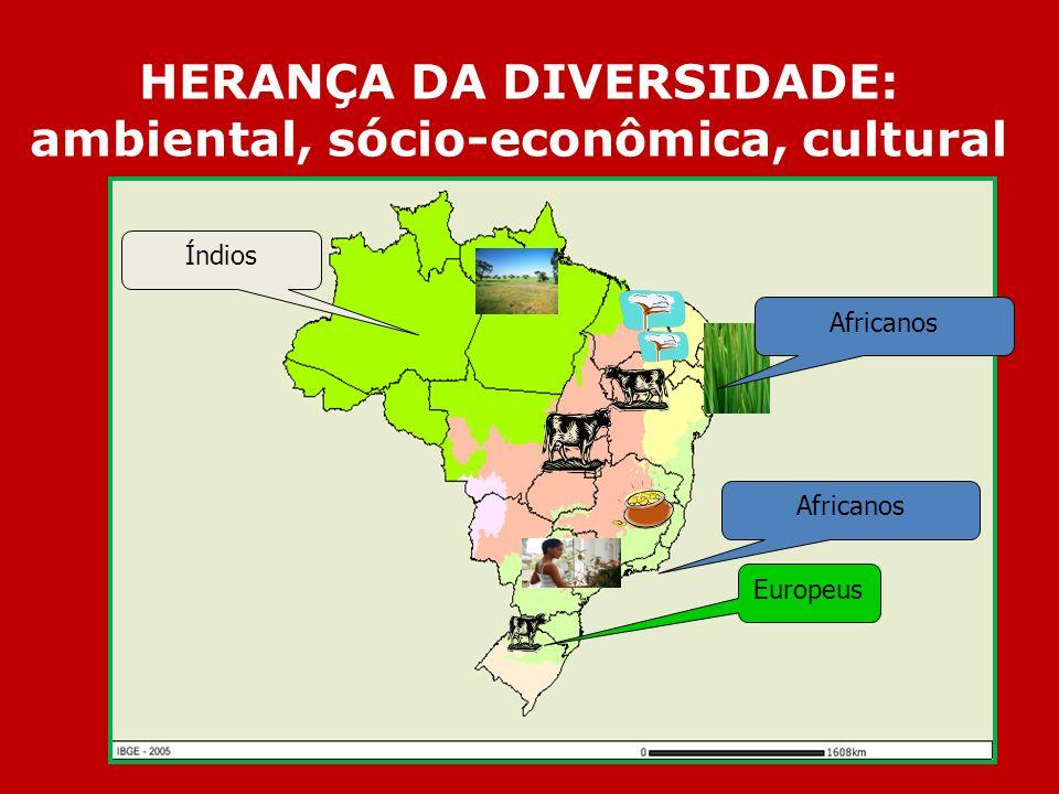 HERANÇA DA DIVERSIDADE: ambiental, sócio-econômica, cultural