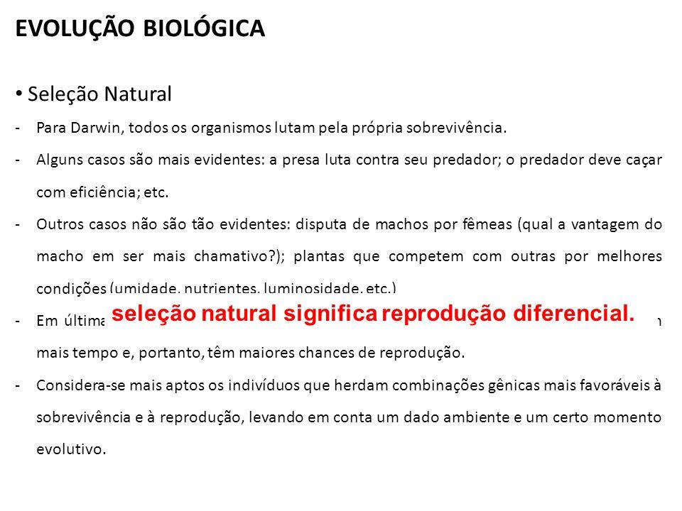 EVOLUÇÃO BIOLÓGICA Seleção Natural