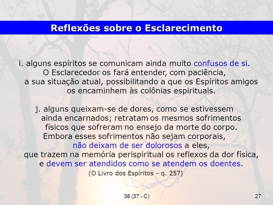Reflexões sobre o Esclarecimento