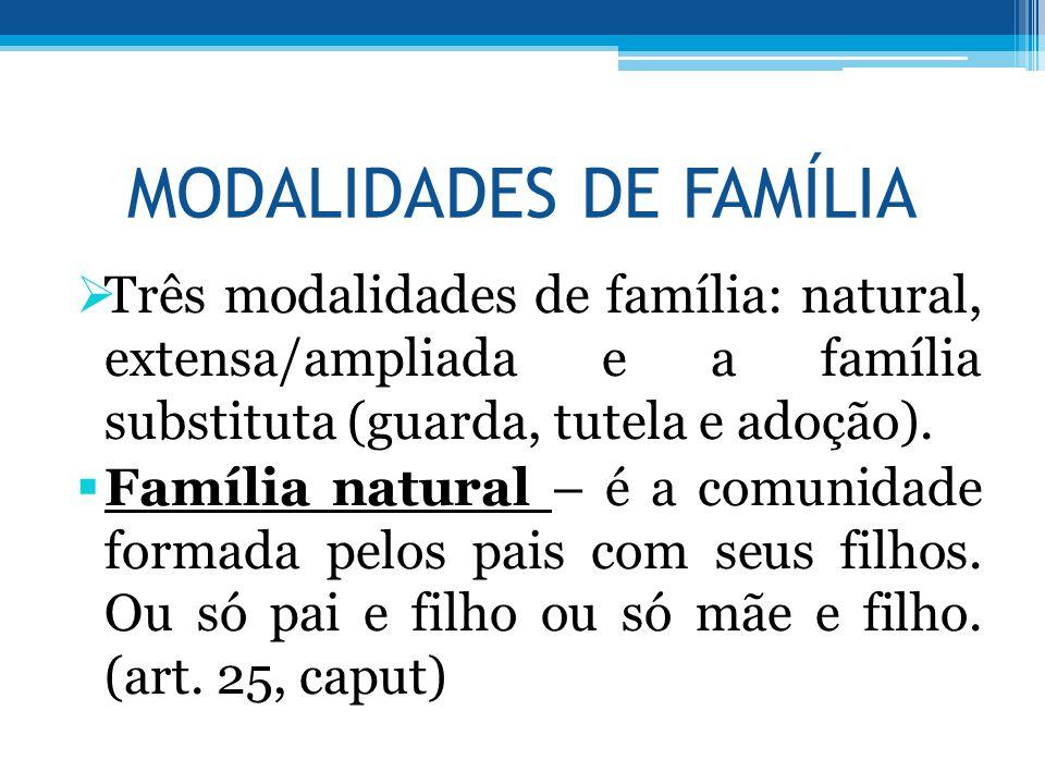 MODALIDADES DE FAMÍLIA