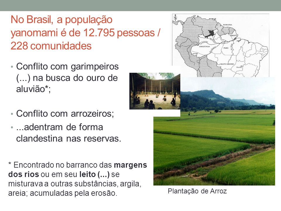 No Brasil, a população yanomami é de 12.795 pessoas / 228 comunidades