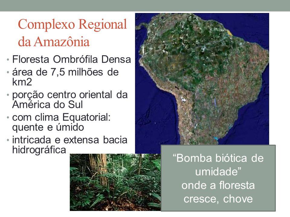 Complexo Regional da Amazônia