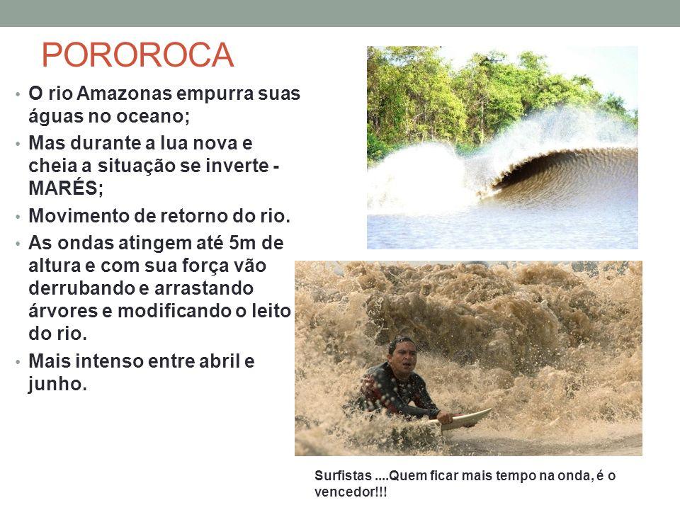 POROROCA O rio Amazonas empurra suas águas no oceano;