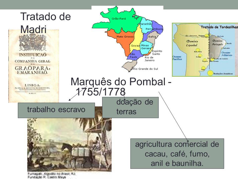agricultura comercial de