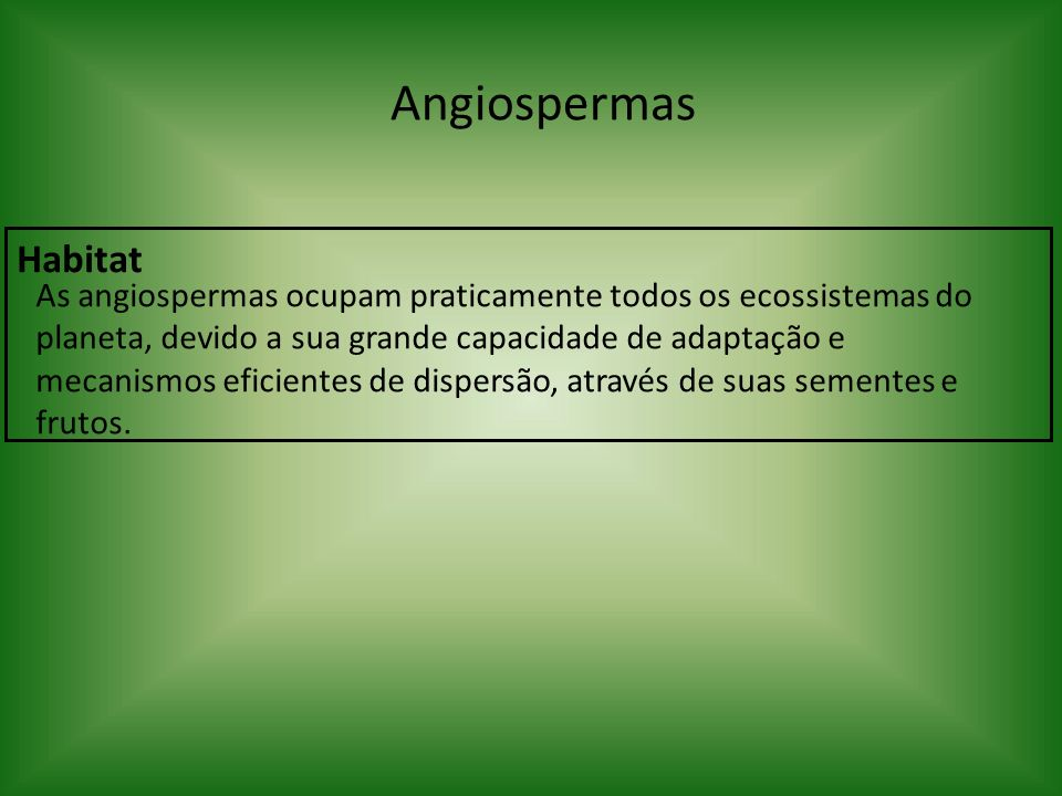 Angiospermas Habitat.