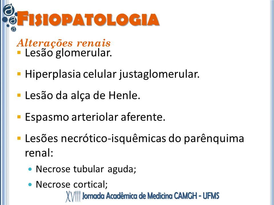 Fisiopatologia Lesão glomerular. Hiperplasia celular justaglomerular.