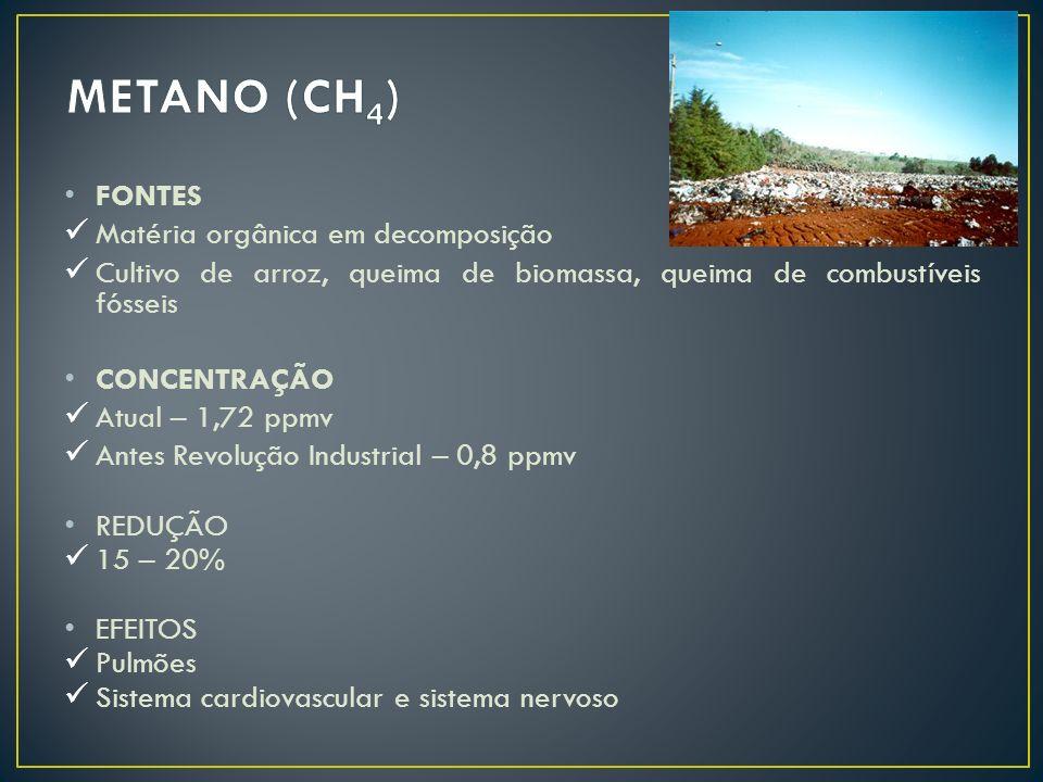 METANO (CH4) FONTES Matéria orgânica em decomposição