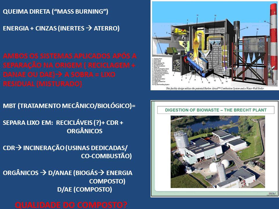 QUEIMA DIRETA ( MASS BURNING )