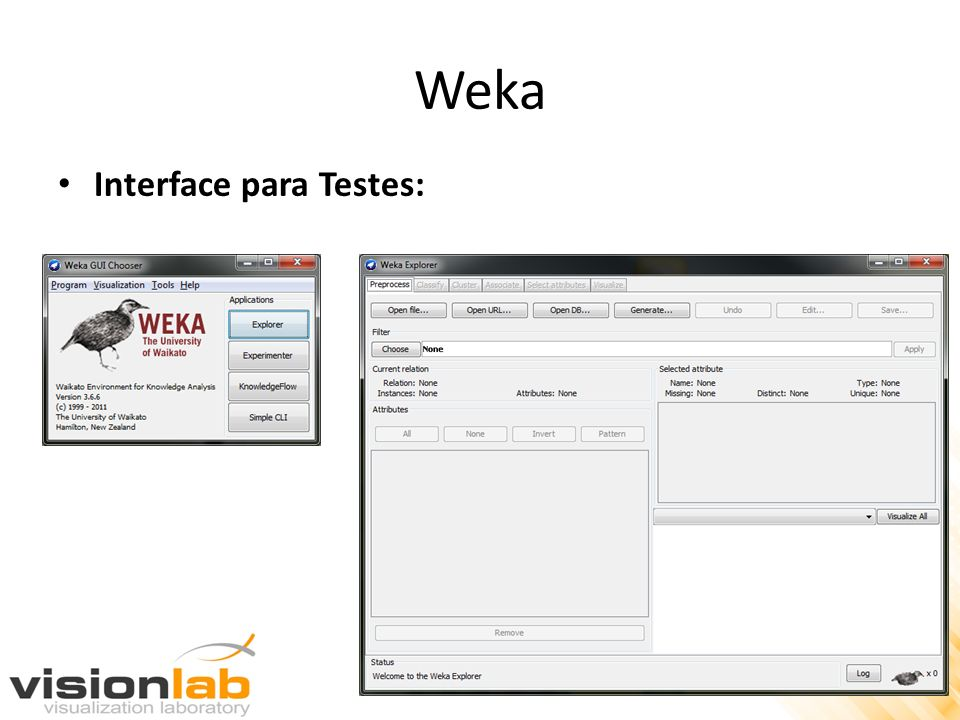 Weka Interface para Testes: