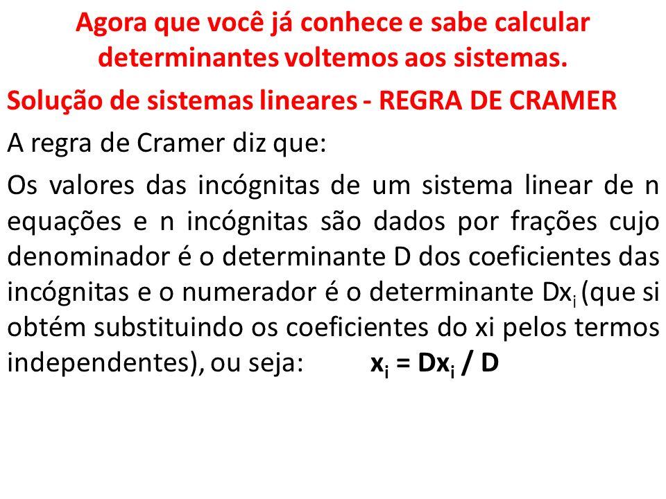 Agora que você já conhece e sabe calcular determinantes voltemos aos sistemas.