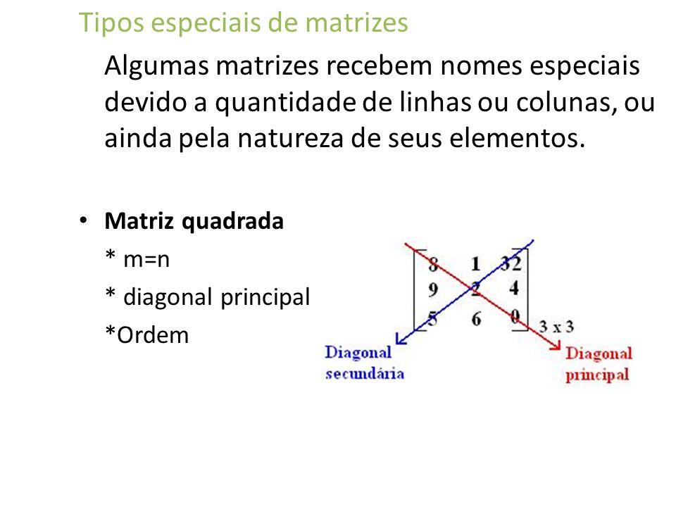 Tipos especiais de matrizes