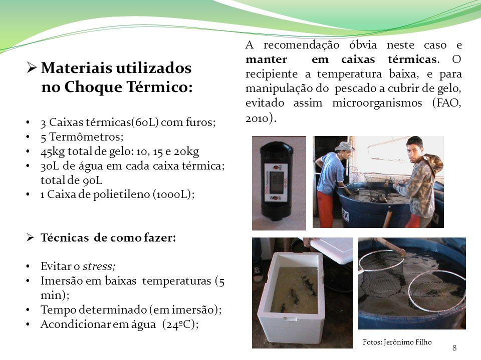 Materiais utilizados no Choque Térmico: