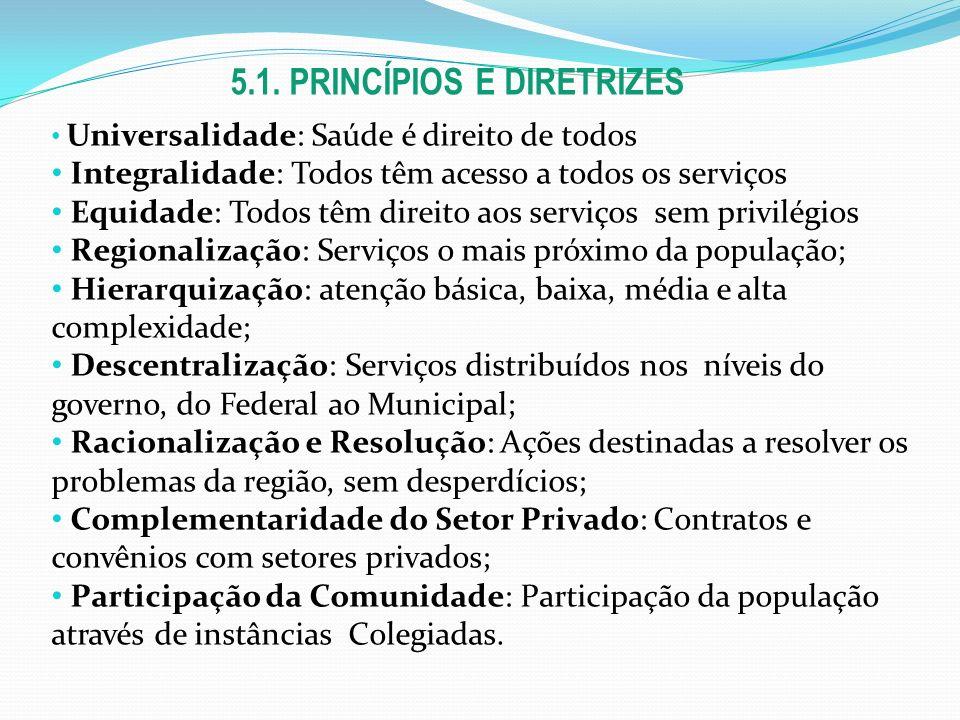 5.1. PRINCÍPIOS E DIRETRIZES