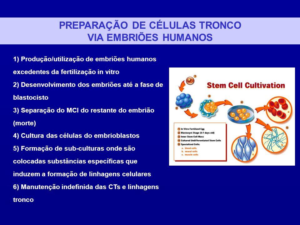 PREPARAÇÃO DE CÉLULAS TRONCO