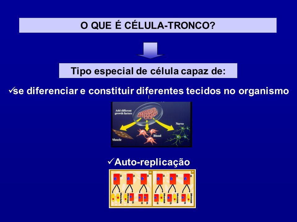 Tipo especial de célula capaz de: