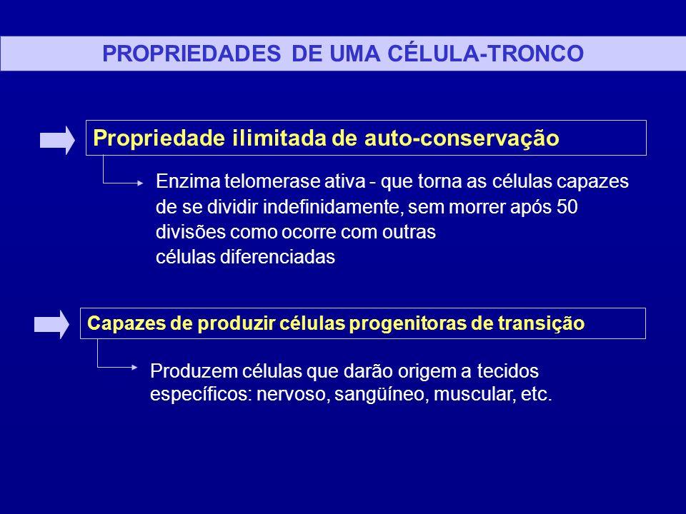 PROPRIEDADES DE UMA CÉLULA-TRONCO