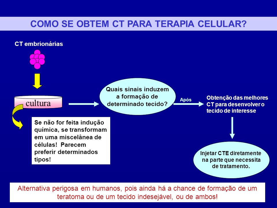 COMO SE OBTEM CT PARA TERAPIA CELULAR Injetar CTE diretamente