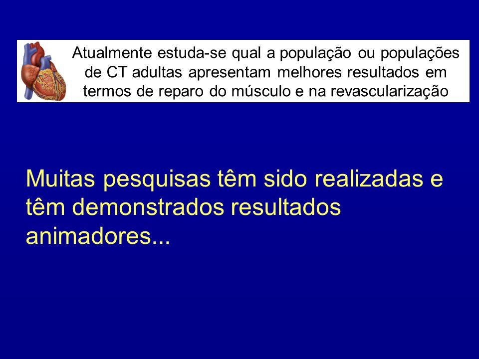 Atualmente estuda-se qual a população ou populações de CT adultas apresentam melhores resultados em termos de reparo do músculo e na revascularização