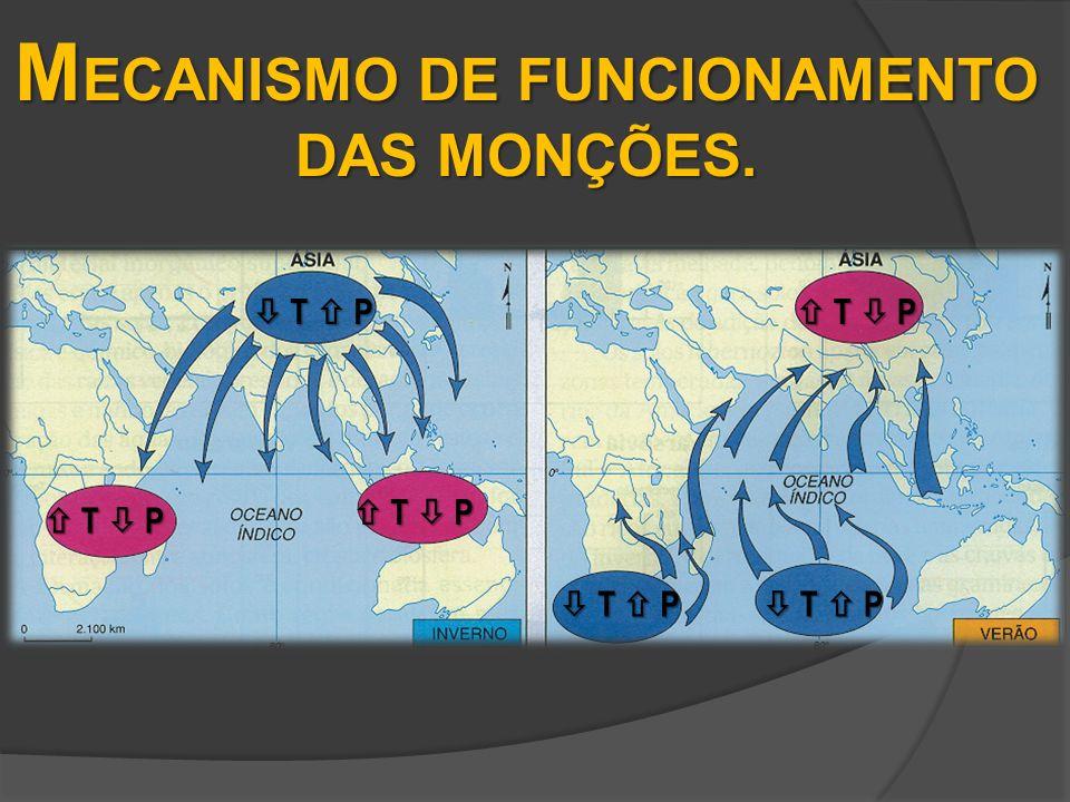 MECANISMO DE FUNCIONAMENTO DAS MONÇÕES.