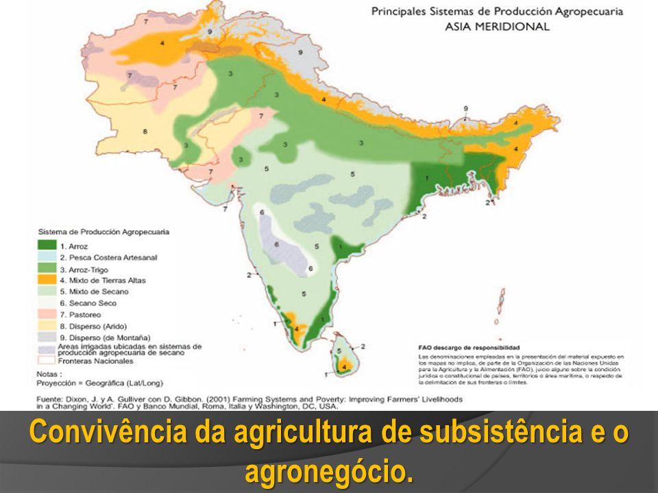 Convivência da agricultura de subsistência e o agronegócio.