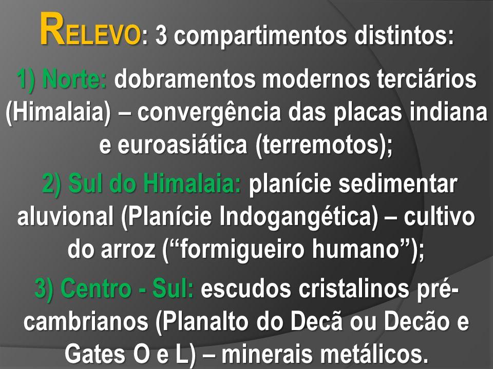 RELEVO: 3 compartimentos distintos: