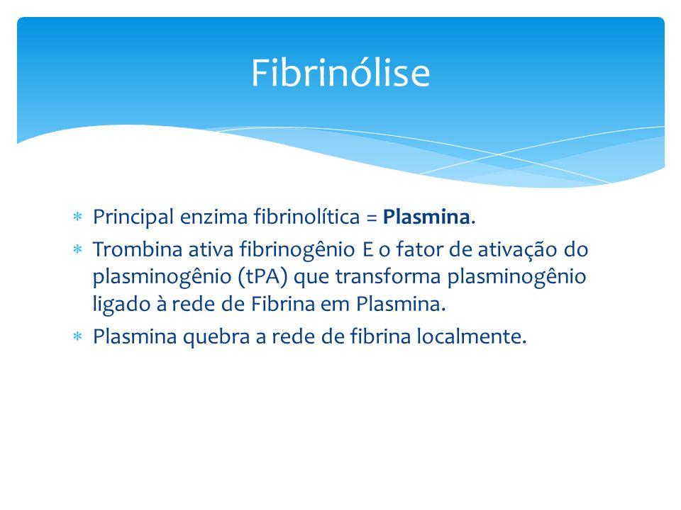 Fibrinólise Principal enzima fibrinolítica = Plasmina.