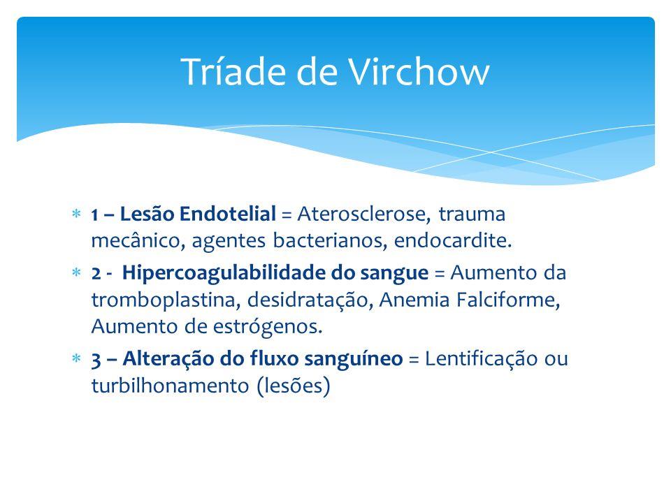 Tríade de Virchow 1 – Lesão Endotelial = Aterosclerose, trauma mecânico, agentes bacterianos, endocardite.