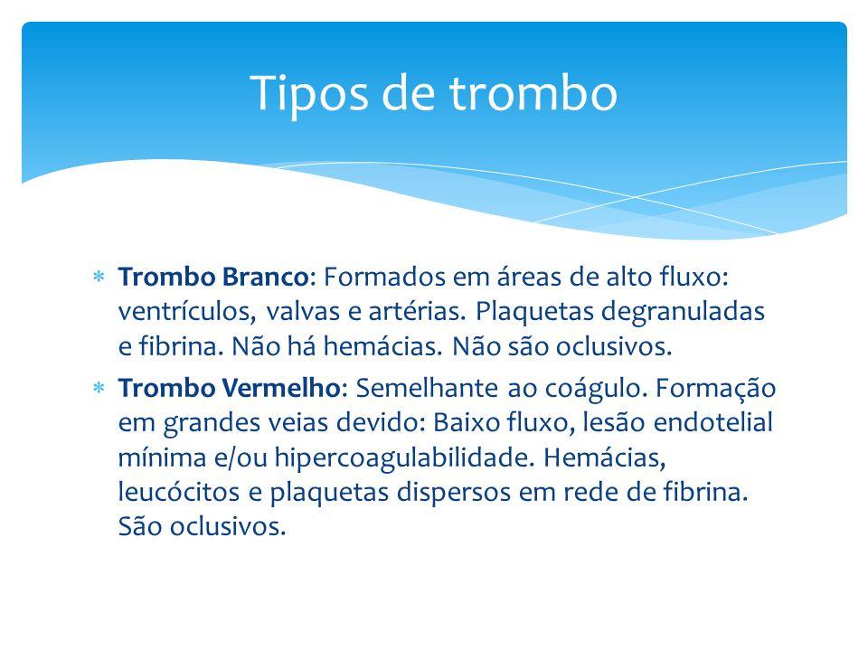 Tipos de trombo